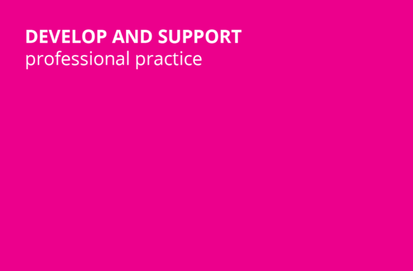 Develop and Support professional practice